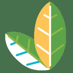 Kultivieren